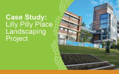 Case Study: Lilly Pilly Place Landscaping Project